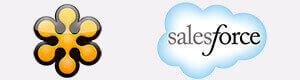 gotomeeting salesforce